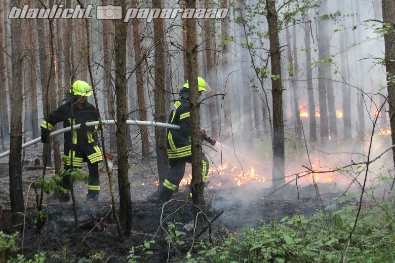 Waldbrand bei über 30 Grad